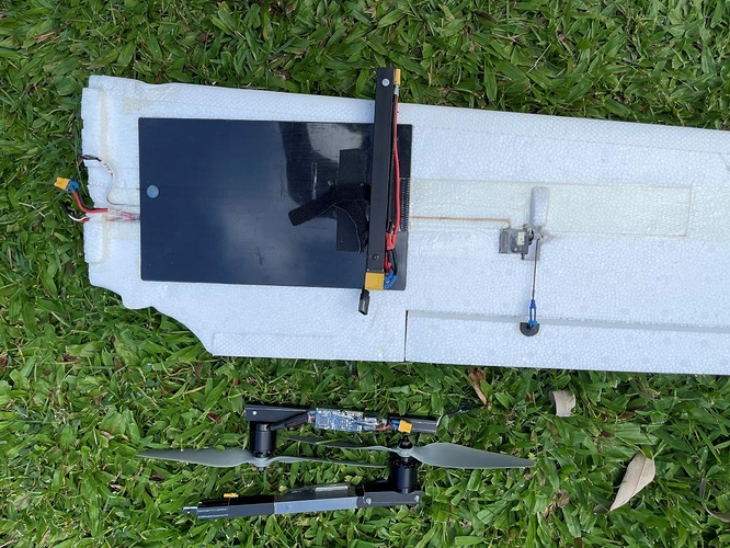 SW 1880 QuadPlane Wings (1)