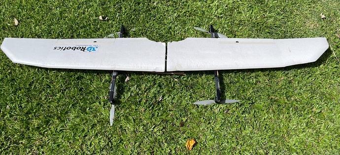SW 1880 QuadPlane Wings (4)