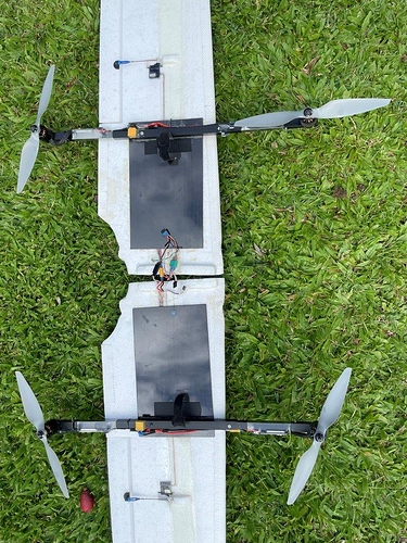 SW 1880 QuadPlane Wings (5)