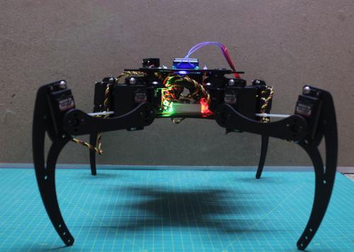 Walking_robot-front